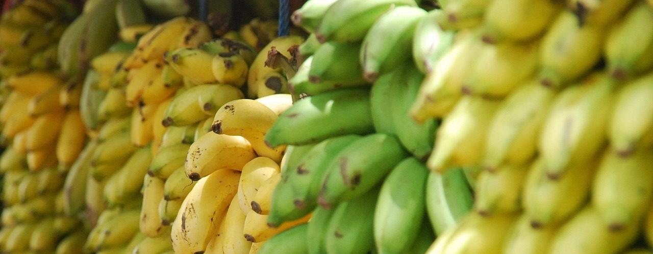 熟成中のバナナ